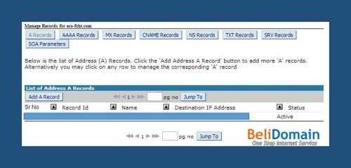 Cara mengakses DNS management di domainkontrol